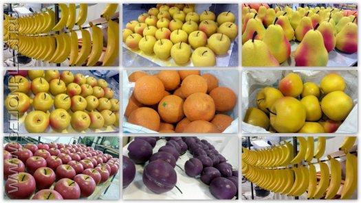 Бананы, яблоки, апельсины, груши, сливы из пенопласта