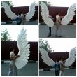 Пенопластовые крылья