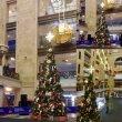 Монтаж новогодней елки в Центральном Детском Магазине на Лубянке
