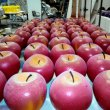 Красные яблоки из пенопласта