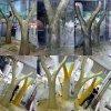 Золотые деревья из пенопласта